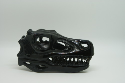 photo of 3 inch T-rex black onyx skull (2) right side light box