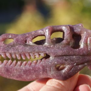 3 inch t-rex purple star jaser (32) left side daylight