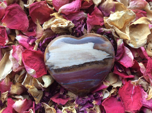 picture of petrified wood heart