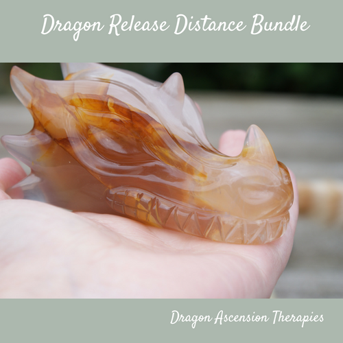 photo advertising Dragon Release Bundle