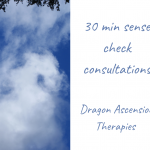 blog for new 30 minute consultations to sense check before committing