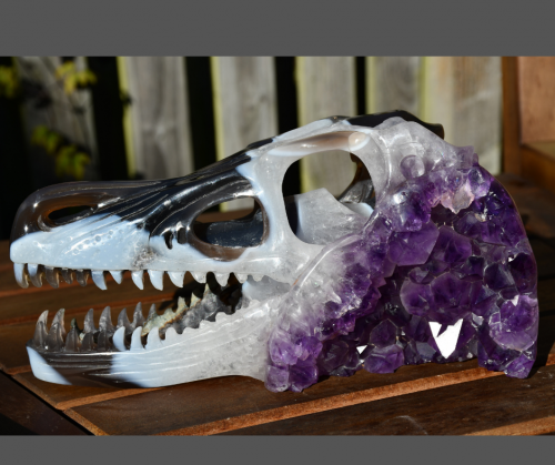 photo of 9 inch agate and amethyst t-Rex crystal skull