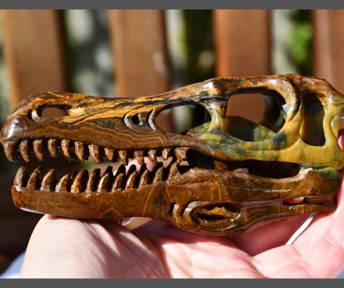 photo of 5 inch Pietersite T-Rex